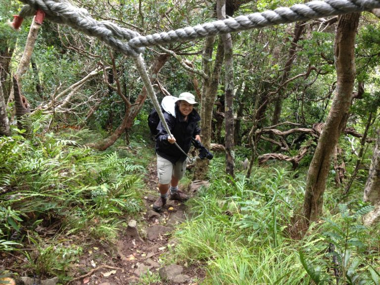 Long climb to the Goat House Caves, Lord Howe Island
